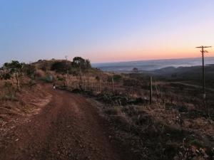 Walk to sunrise