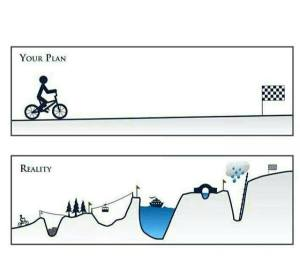 Your Plan - Reality